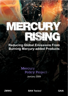 Mercury Rising: Reducing Global Emissions From Burning Mercury-Added Products