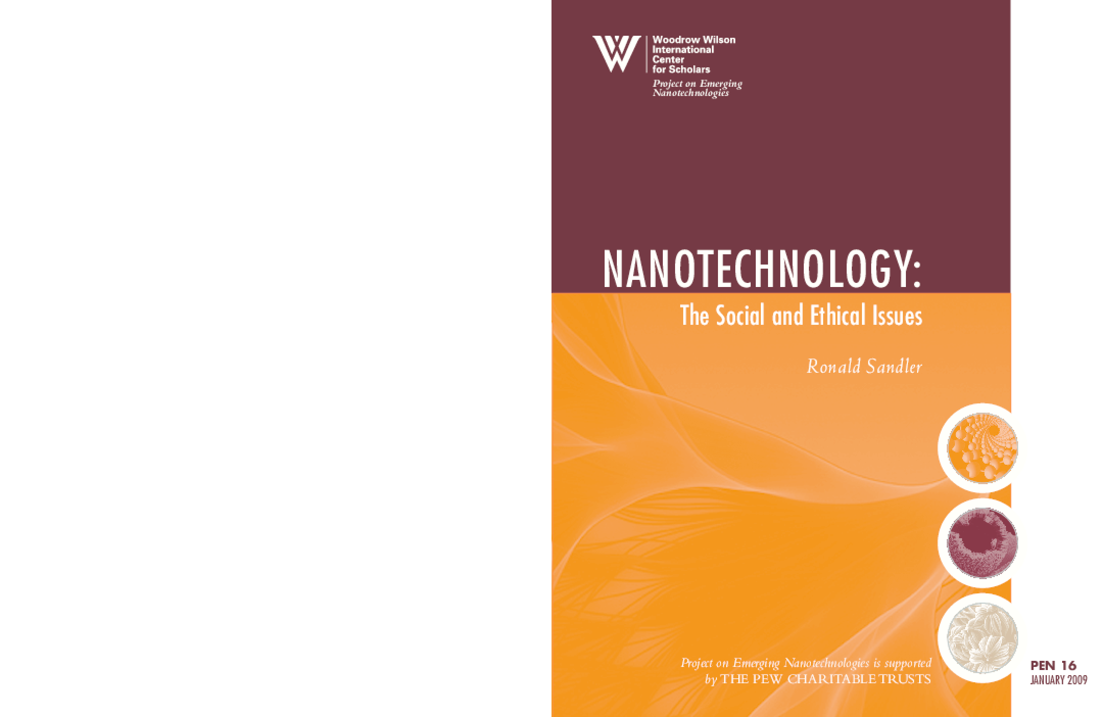 Nanotechnology: The Social and Ethical Issues