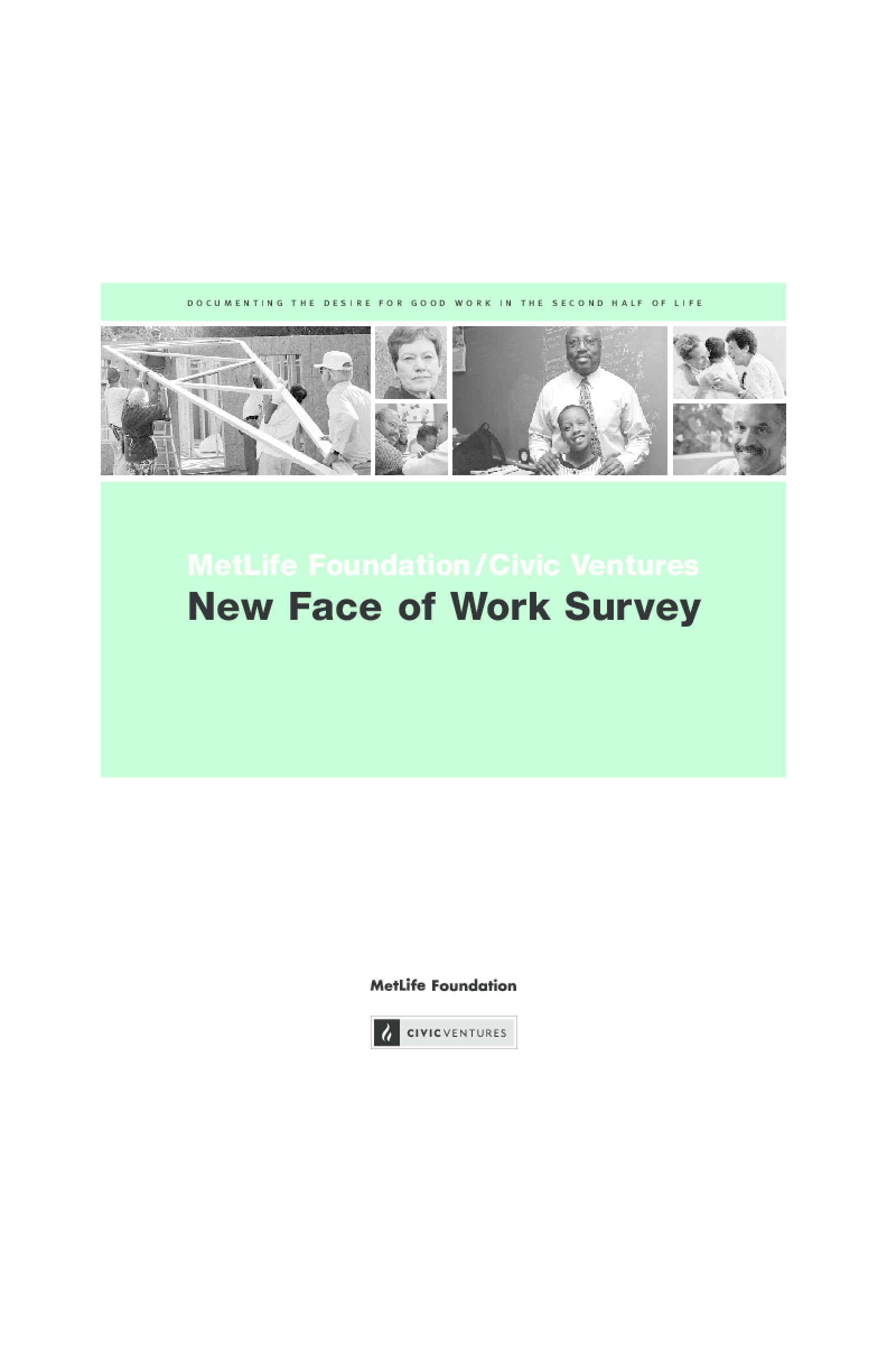 New Face of Work Survey