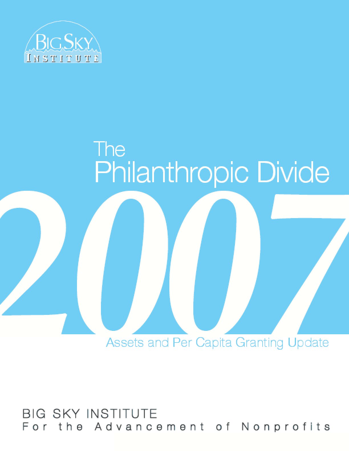 Philanthropic Divide 2007 Update Report