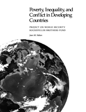 Poverty, Inequality, and Political Stability in Developing Countries