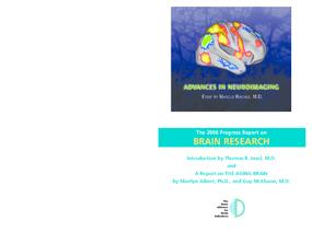 Progress Report on Brain Research 2006: Advances in Neuroimaging