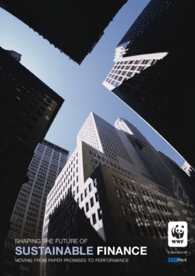 Shaping the Future of Sustainable Finance: Moving From Paper Promises to Performance
