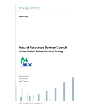 National Resources Defense Council: Problem-Centered Strategic Thinking vs. Global Warming