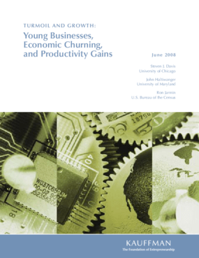Turmoil and Growth: Young Businesses, Economic Churning, and Productivity Gains