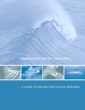 Underwater Central California: A Guide to Saving Your Ocean Heritage
