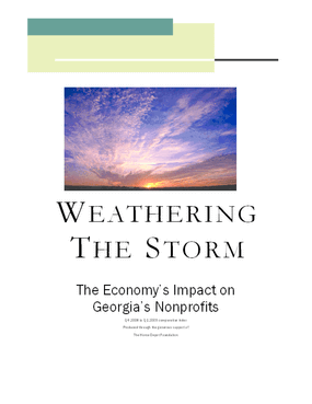 Weathering the Storm: The Economy's Impact on Georgia's Nonprofits, Q4 2008 to Q1 2009 Comparative Index