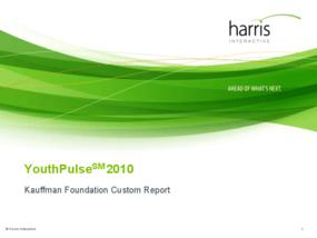 Youth Entrepreneurship Survey 2010