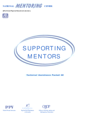 Supporting Mentors