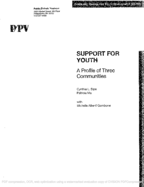 Support for Youth: A Profile of Three Communities (a Community Change for Youth Development [CCYD] report)