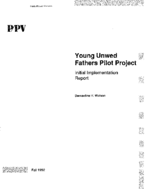 The Young Unwed Fathers Pilot Project: Initial Implementation Report Executive Summary