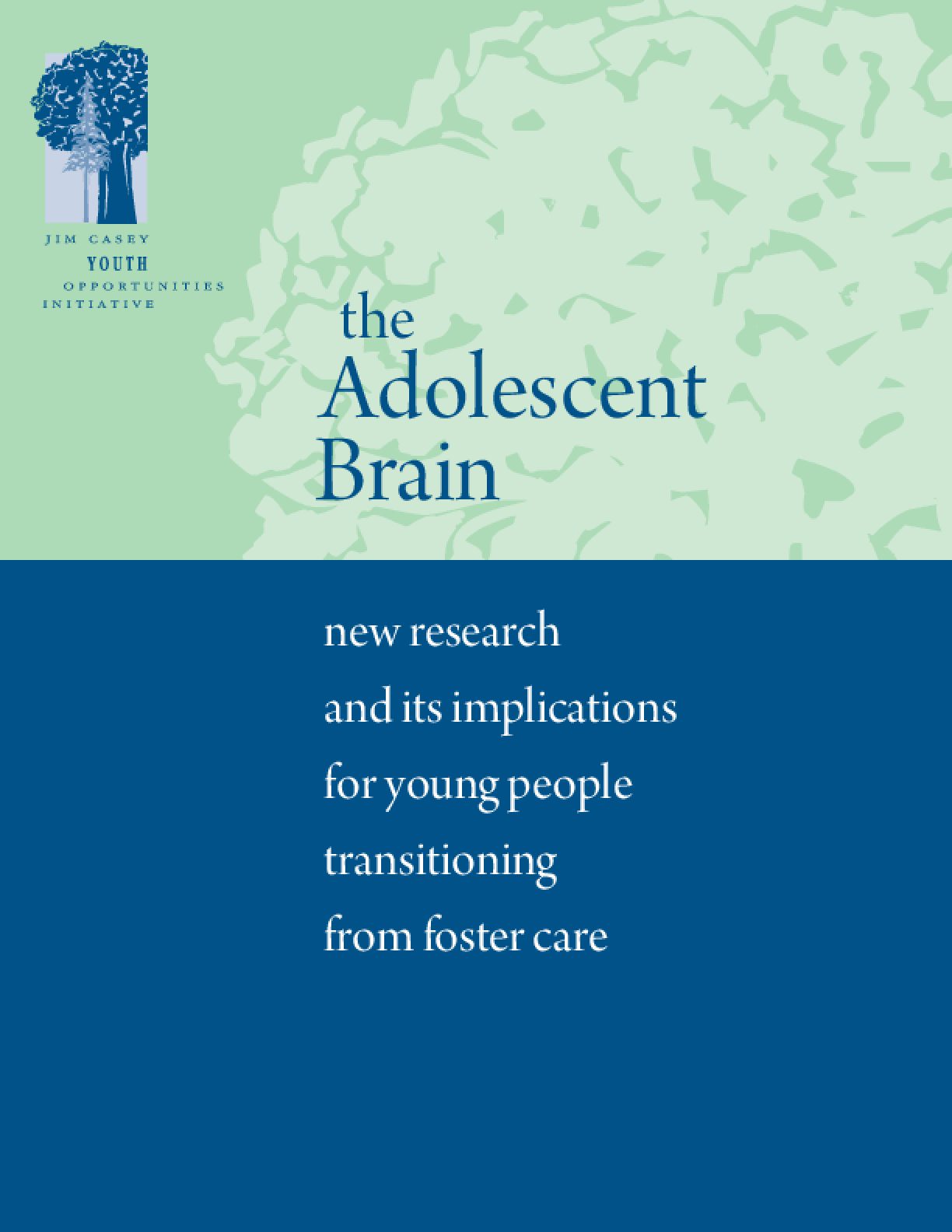 The Adolescent Brain: New Research and Its Implications for Young People Transitioning From Foster Care
