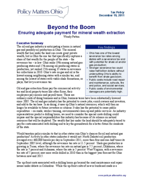 Beyond the Boom: Ensuring Adequate Payment for Mineral Wealth Extraction