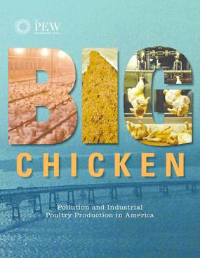 Big Chicken: Pollution and Industrial Poultry Production in America