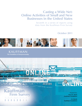 Casting a Wide Net: Online Activities of Small and New Businesses in the United States