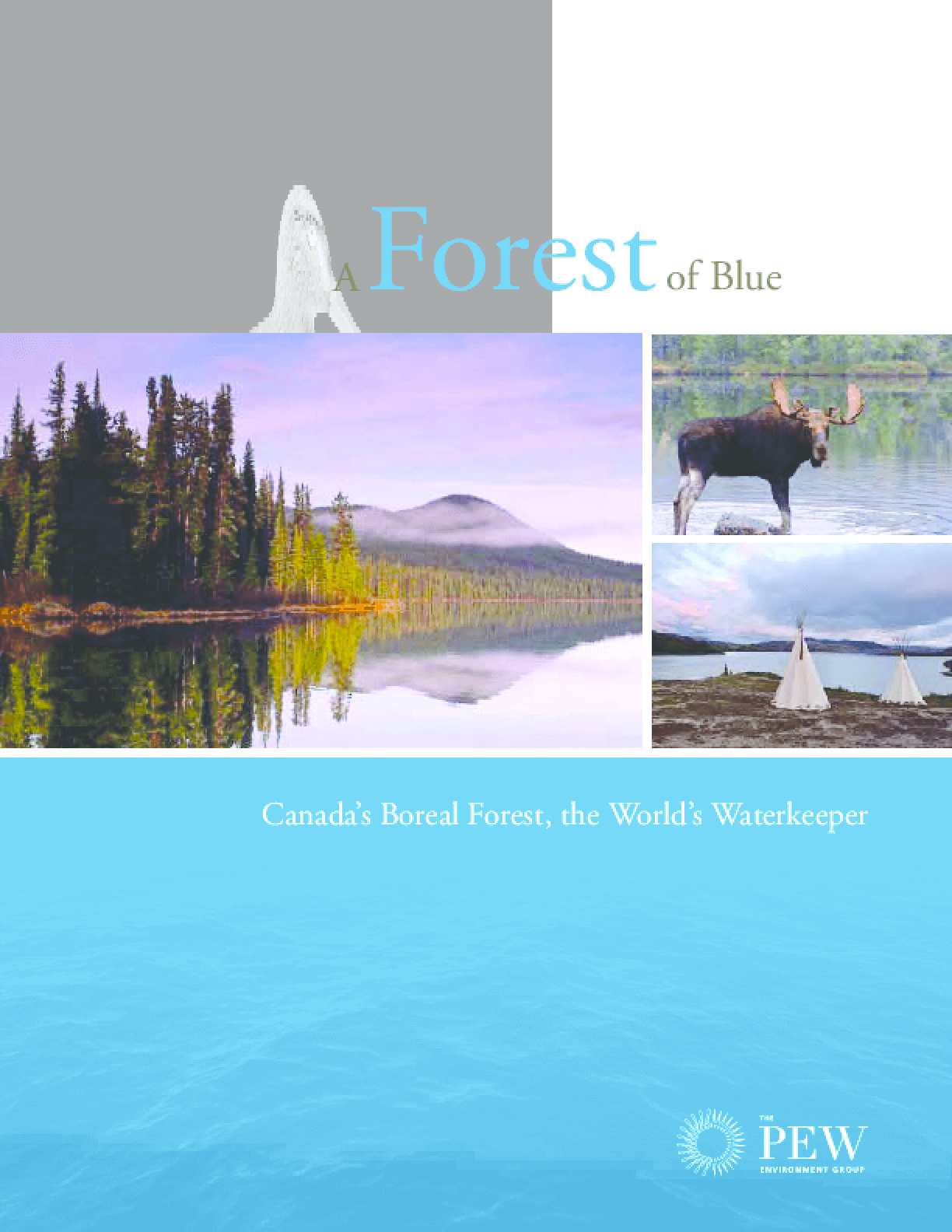 A Forest of Blue - Canada's Boreal Forest, the World's Waterkeeper