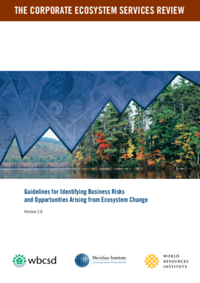 Guidelines for Identifying Business Risks and Opportunities Arising From Ecosystem Change