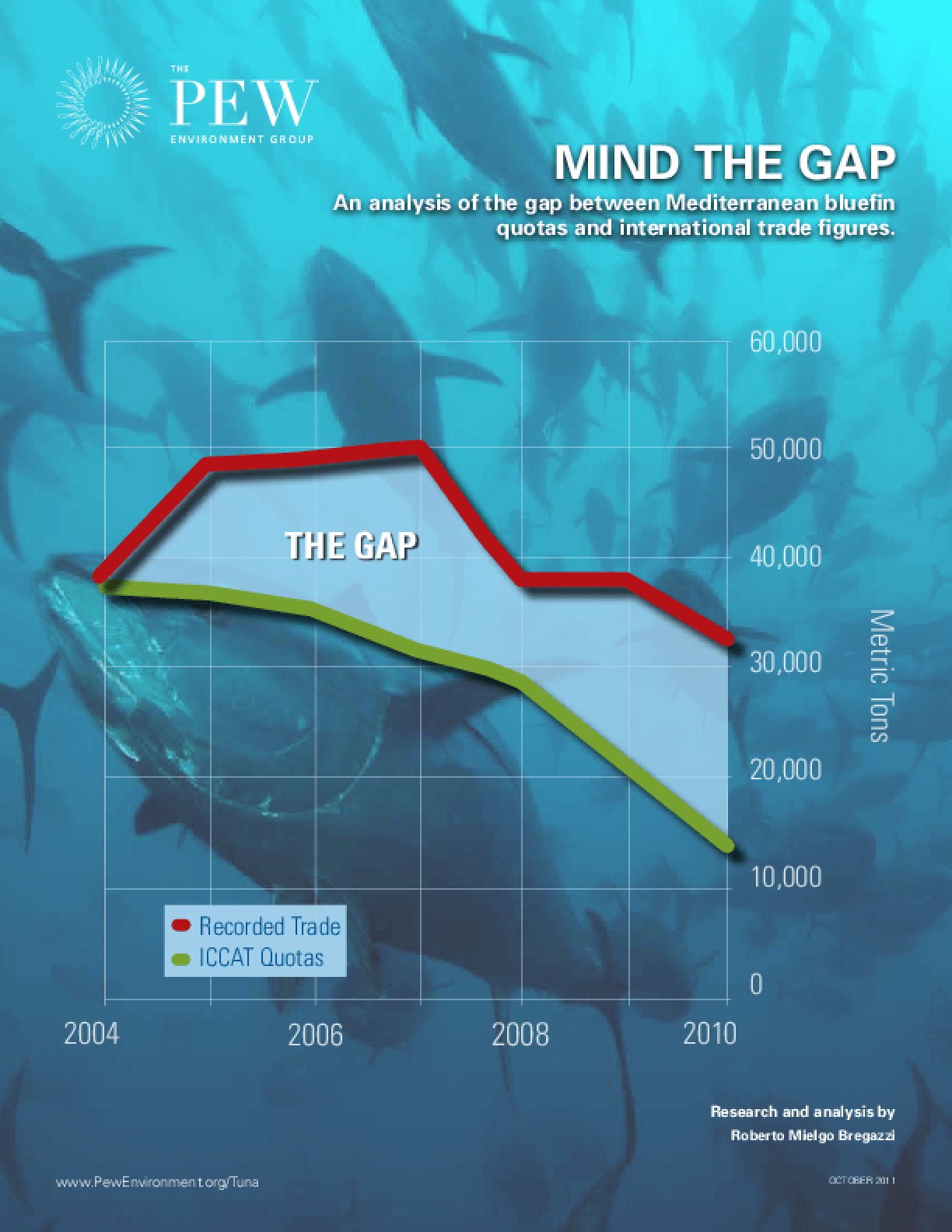 Mind the Gap: An Analysis of the Mediterranean Bluefin Trade