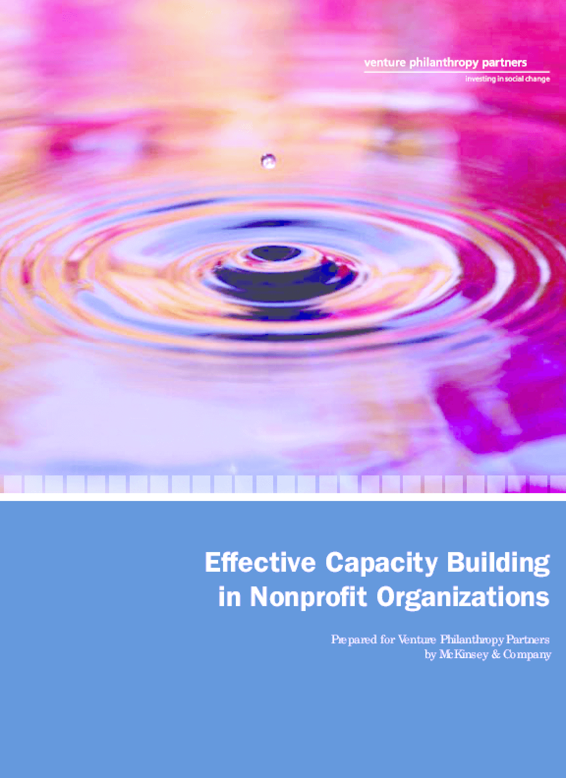 Effective Capacity Building in Nonprofit Organizations
