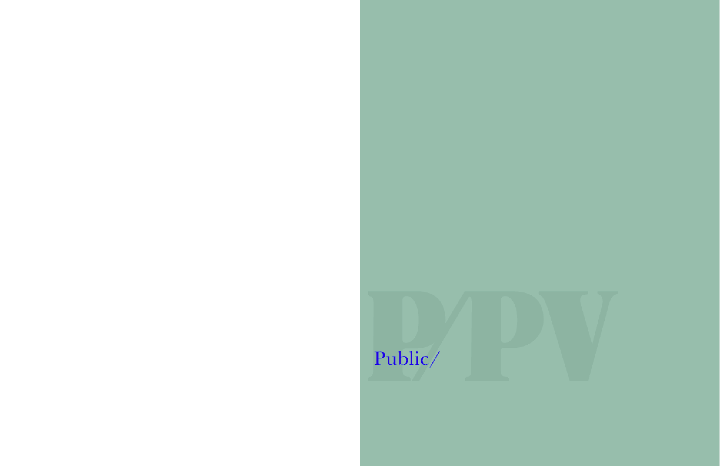 Private Public Ventures 2008 Annual Report