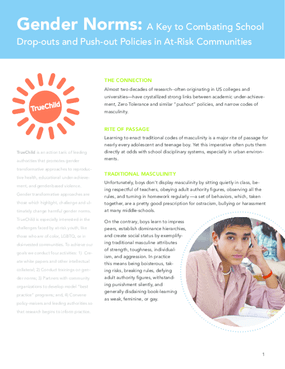 Overview: Gender Norms, School Dropouts & Zero Tolerance Policies
