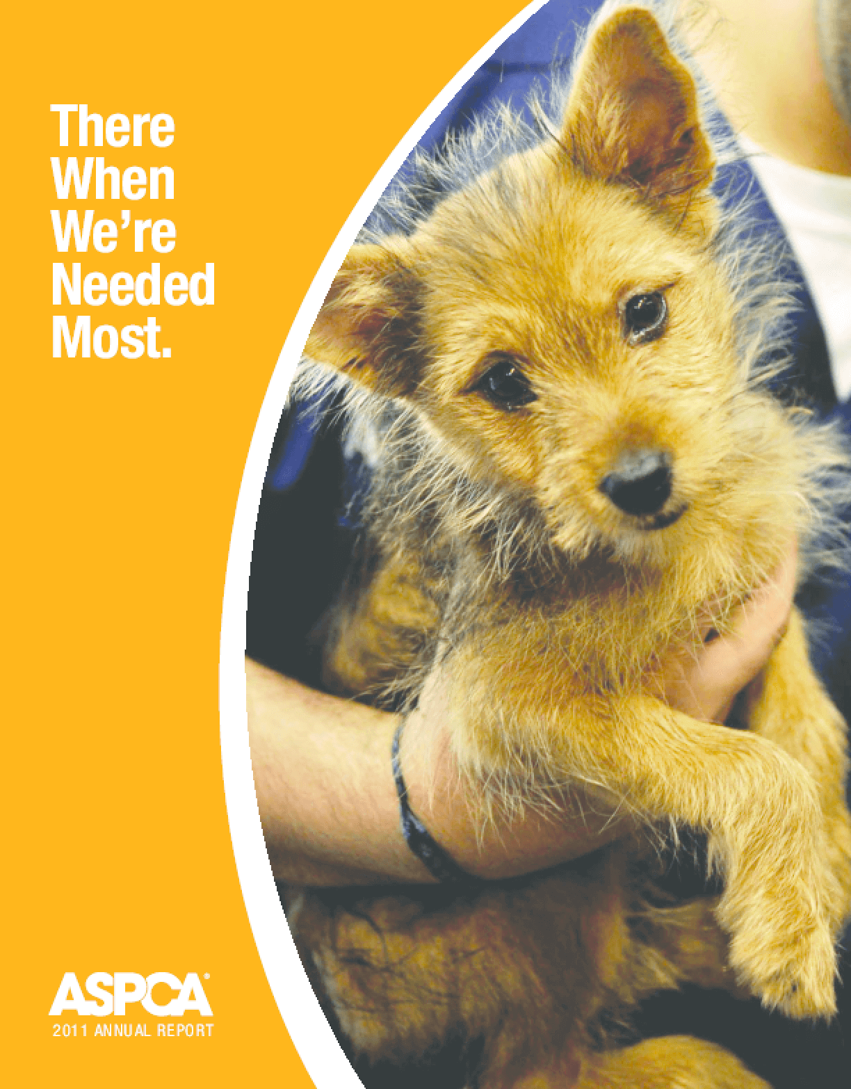 There When We're Needed Most: The ASPCA's 2011 Annual Report