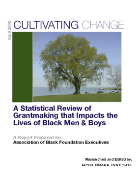 Cultivating Change: A Statistical Review of Grantmaking That Impacts the Lives of Black Men and Boys