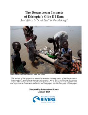 The Downstream Impacts of Ethiopia's Gibe III Dam