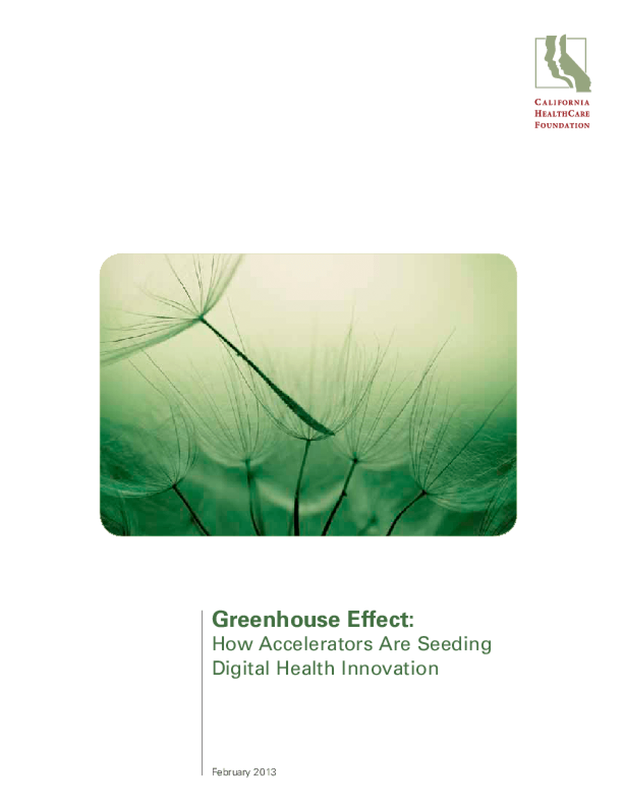 Greenhouse Effect: How Accelerators Are Seeding Digital Health Innovation