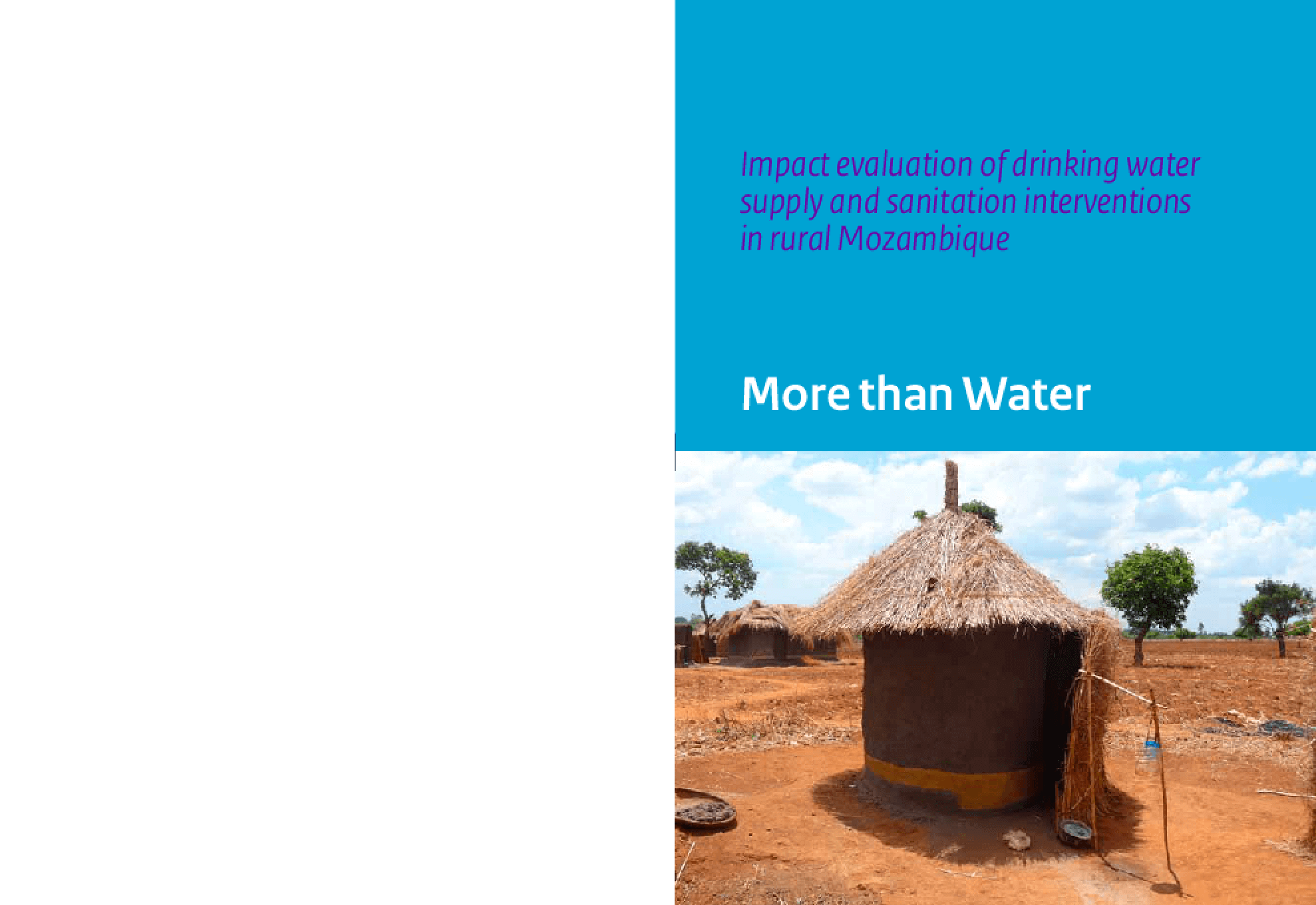 Impact Evaluation of Drinking Water Supply and Sanitation Interventions in Rural Mozambique: More Than Water