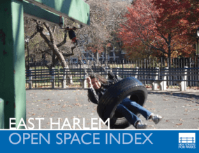 East Harlem Open Space Index