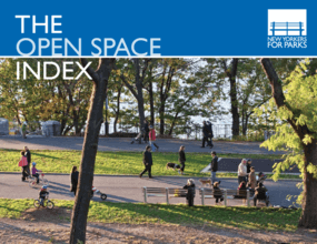 The Open Space Index