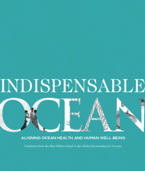 Indispensable Ocean: Aligning Ocean Health and Human Well-Being