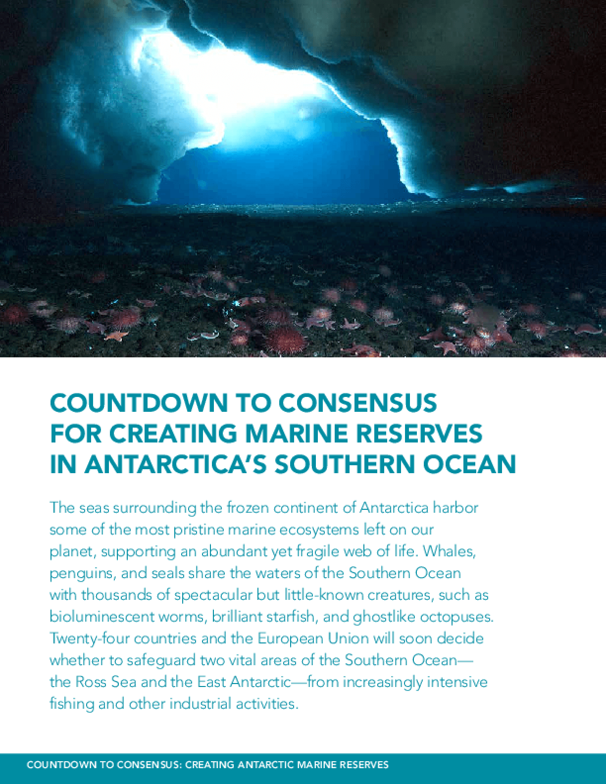 Countdown to Consensus for Creating Marine Reserves in Antarctica's Southern Ocean
