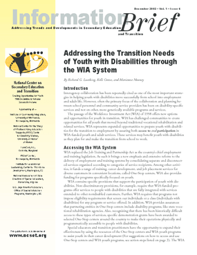 Addressing the Transition Needs of Youth with Disabilities through the WIA System