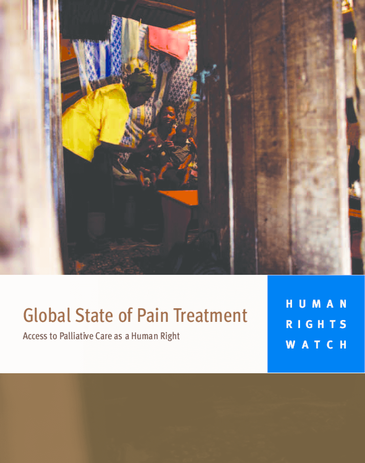 Global State of Pain Treatment: Access to Medicines and Palliative Care