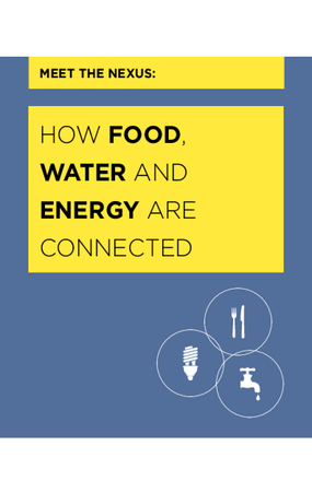 Meet the Nexus: How are Food, Water and Energy Connected