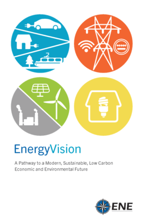 EnergyVision: A Pathway to a Modern, Sustainable, Low Carbon Economic and Environmental Future