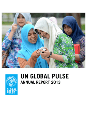 UN Global Pulse: Annual Report 2013