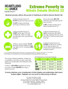 Poverty Fact Sheet for Illinois Senate District 22