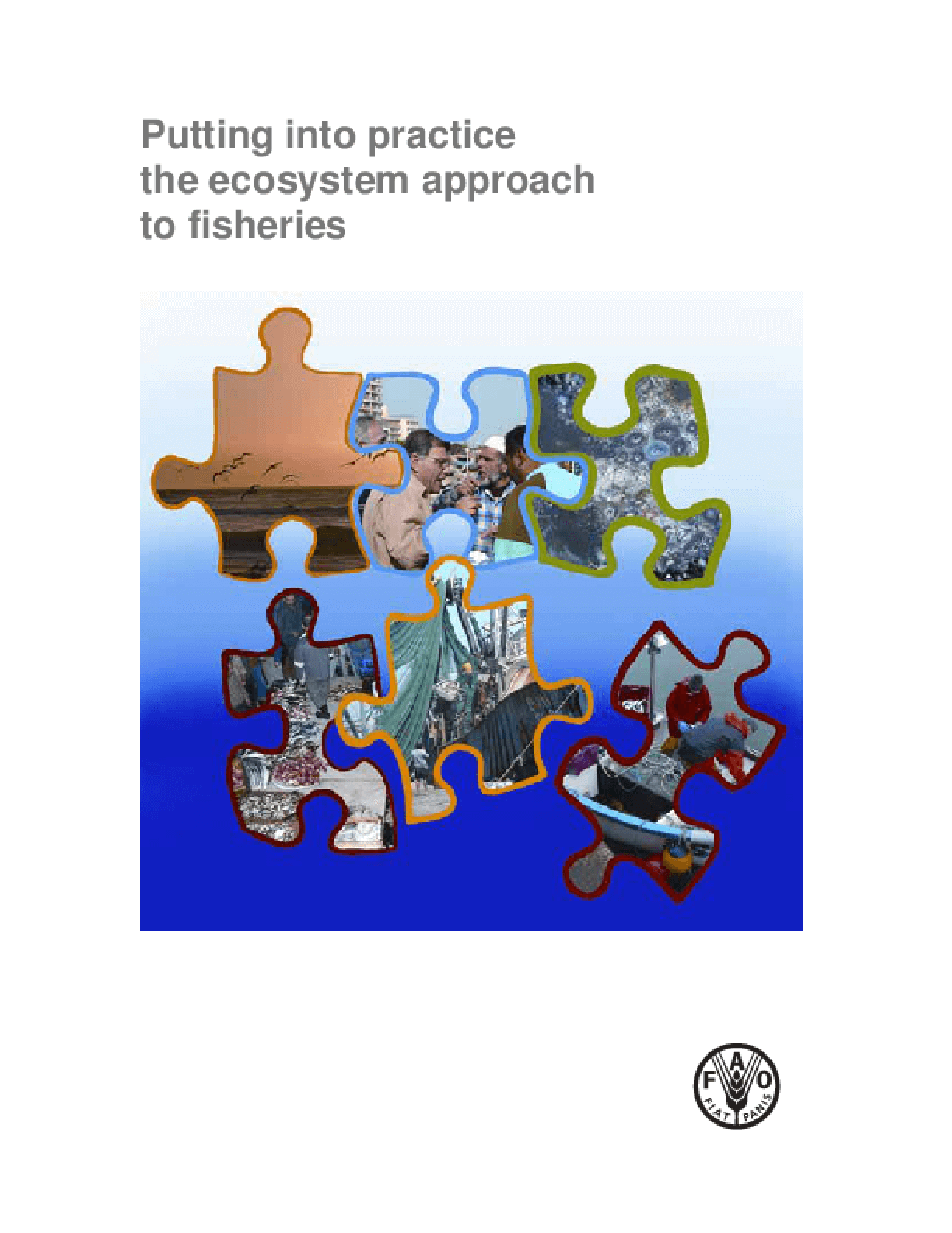 Putting Into Practice the Ecosystem Approach to Fisheries