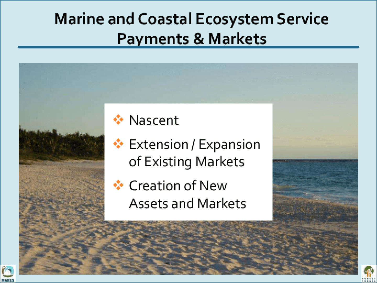 Marine and Coastal Ecosystem Service Payments and Markets