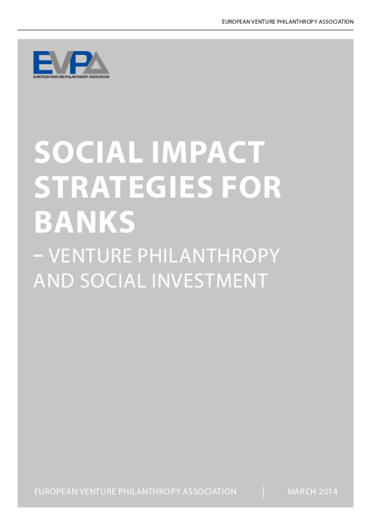 Social Impact Strategies for Banks: Venture Philanthropy and Social Investment