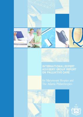 International Expert Advisory Group Report on Palliative Care