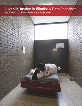 Juvenile Justice in Illinois: A Data Snapshot