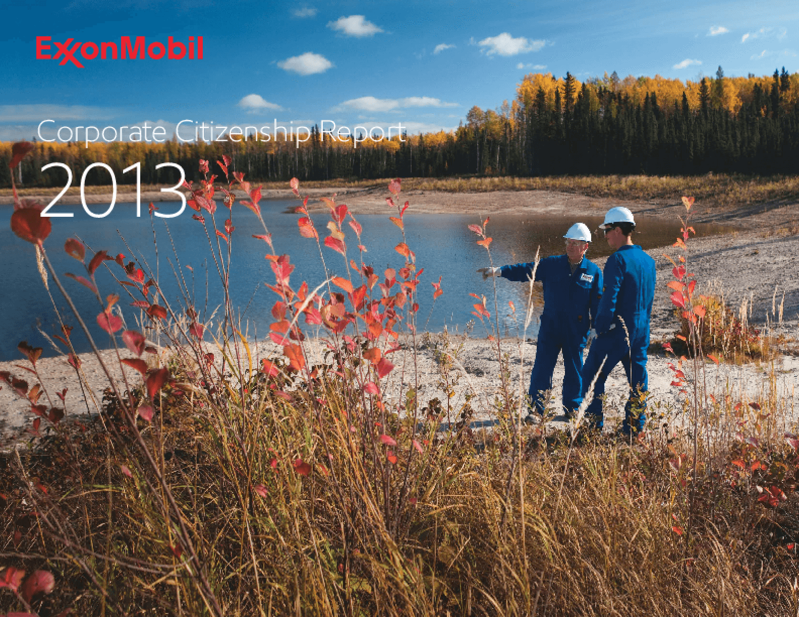 ExxonMobil Corporate Citizenship Report 2013