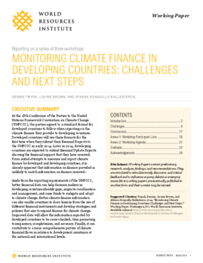 Monitoring Climate Finance in Developing Countries: Challenges and Next Steps