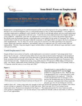 Issue Brief: Focus on Employment