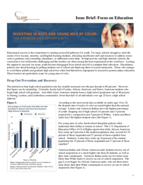 Issue Brief: Focus on Education
