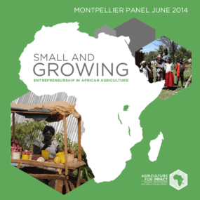 Small and Growing: Entrepreneurship in African Agriculture